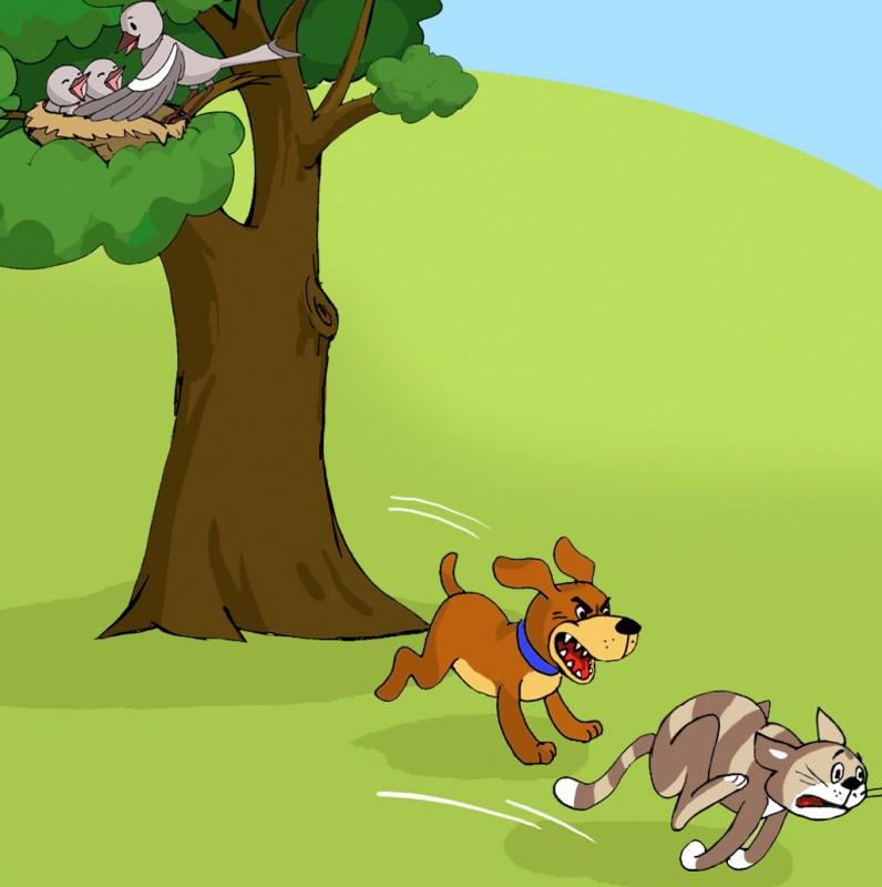 Random Example MAIN Illustration